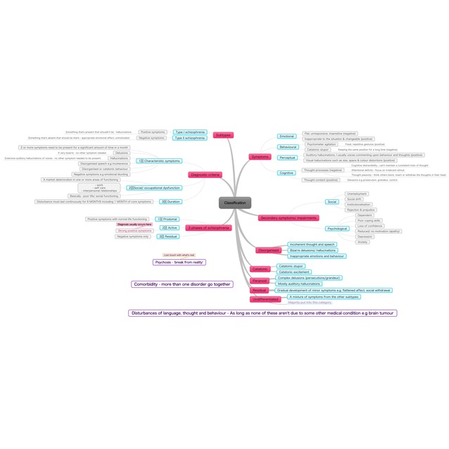 characteristics of classification essay